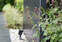 Karen Rogers' Portfolio / These are a selection of gardens I have designed both in and outside of London. Visit my website at www.krgardendesign.com