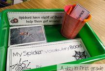 Spiders-school