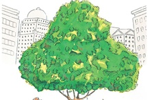 environmental picture books