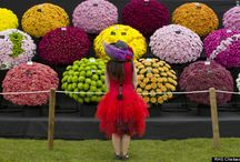 Enjoy Spring In London! / Photo link: http://www.huffingtonpost.co.uk/2014/05/20/chelsea-flower-show-gardens-2014_n_5355946.html Come and experience the world's greatest flower show at London's Royal Hospital Chelsea.  The show has become an important venue for watching emerging gardening trends.  Tickets can be purchased via rhs.org.uk or by calling 0844 338 7502