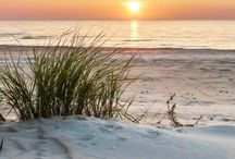 Golden Hour Anna Maria Island / by Anna Maria Island Resorts