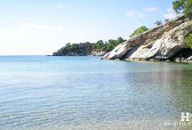 HalkidikiTravel.com - Spathies beach in Halkidiki