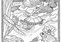coloriages animaux / faune