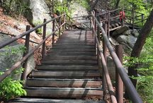 Bring It On Trail Run Wooden Stairs / 가파른 나무 계단 (A Steep Wooden Stairs) GPS: 37.632107  126.977638 고도(Altitude): 576m