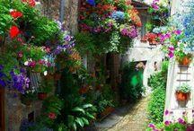 Italy / by Patti Umlauf