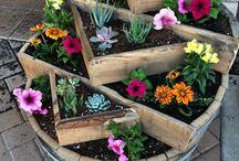Gardening / Gardening projects