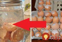 inšpi s vaječnými škrupinami