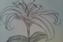 Drawings  / I've taken up drawing again... / by Stefanie Haymon