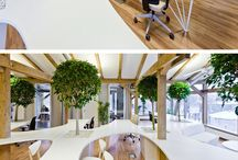 Ofis / Office