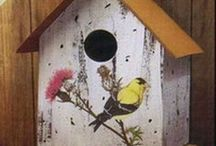 Crafting/D.I.Y....Outdoors -Bird houses/food containers etc / different types of bird houses / by Julie Richards