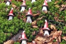 Shrooms and Gnomes