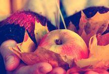 Harvest Home / Autumn Equinox or Mabon