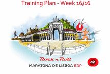 Training Plan for the Marathon - week 16/16 / Training Plan for the Marathon - week 16/16 Whatever happens on the 18th October, one thing is guaranteed: we had the courage to accept the challenge. We had the courage to train until we could go any further, until we got blister on our feet, until we burnt our skin, until we got desperate, until we doubted, until we believed... ​We trained for the marathon and that nobody is taking away from us!