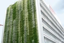 Green Walls - Techniques, függőleges kert