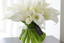 Luxury Flowers / Everyone deserves a little bit of luxury in their life and our floral gift arrangements add the perfect finishing touch to any room.