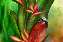 Tropical Flower Art