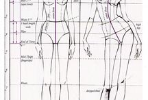 Reference - Anatomy