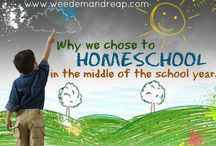 Unschooling / If kids are born learning, maybe we don't need to 'school' them?