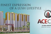 Ace City Greater Noida / Best deal in Greater Noida West