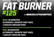 Mp Workouts Fat Burner