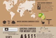 Garcinia Cambogia naturlige slankepiller / Hvordan virker den asiatiske frugt og hvor stort et vægttab kan man forvente med garcinia cambogia ekstraktet?