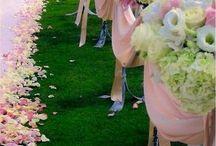Ceremony - Pink
