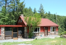 Dream Cabin / We renovated our rural cabin in 2011, now it's time to renovate the garden.