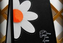 Flowers & Garden Cards