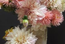 Wedding Colors ♡ Peach / A playful mix of colors for your wedding. || Eine farblich spielerische Kombination für Deine Hochzeit.