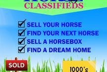 Everything Hrose Classifieds