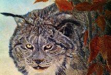 Peintures de Géry van der Kelen / Peintures animalières