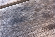 wood / by Jack Armley