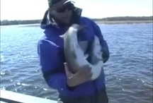 Outdoors / Ice Fishing