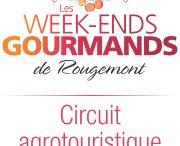 Les Week-ends gourmands de Rougemont / Découvrez la fraîcheur et la qualité des produits de notre région. Dégustations raffinées et animation musicale dans les vergers; tous les ingrédients sont réunis pour une sortie réussie!