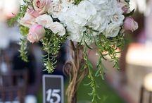 Garden Wedding / Wedding reception