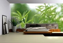 Dream Home-Bedroom Beauty / by Kirsten Romriell