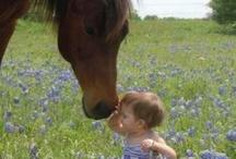 Horses - Early Horse Love