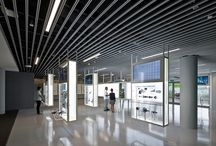 Singapore / by Eight Inc.