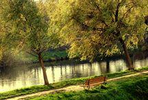 riverside / I'm living here