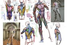 Anatomì