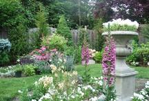 Gardening / by RML3Sons