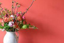 Flowers @ Home / bloemen thuis
