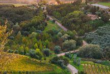 Italia. / Paesaggi ed altro.