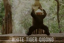 White Tiger Qigong