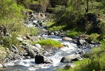 Parque Nacional Arusha