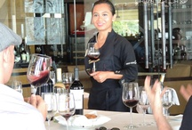 Wine tasting / Wine tasting Garza Blanca Preserve  in #PuertoVallarta