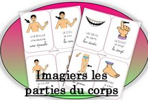 Corps humain maternelle