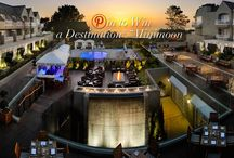 Destination Minimoon Contest