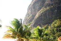 Tropical Island Escape   ☀