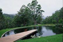 pond & deck